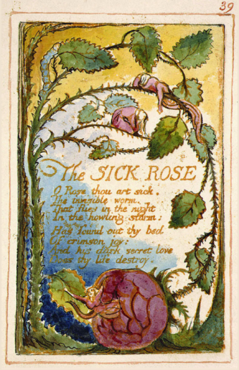 The Sick Rose William Blake